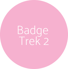 Live Badge Trek 2